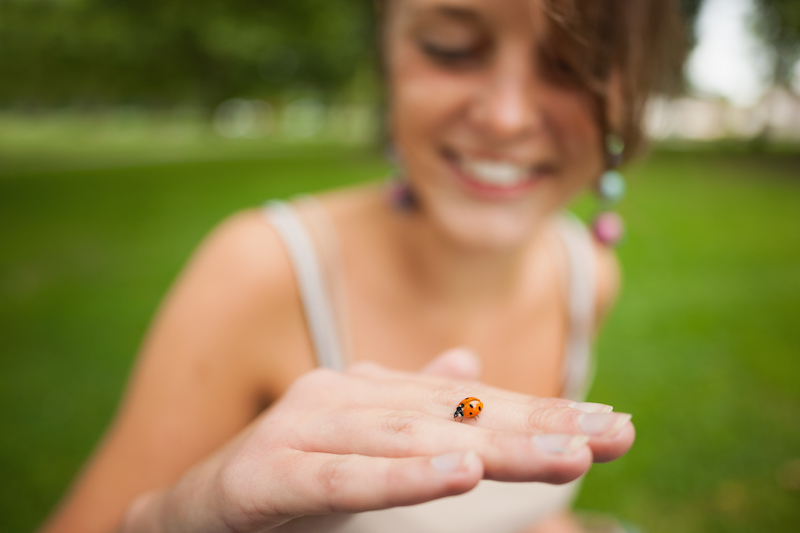 Ladybug, Ladybug, fly out of the farm, and land right on my little arm...
